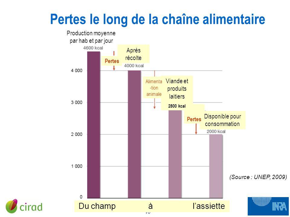 10 CNA 12 janvier 2010 Pertes le long de la chaîne alimentaire Du champ à lassiette Production moyenne par hab et par jour Après récolte Pertes Dispon
