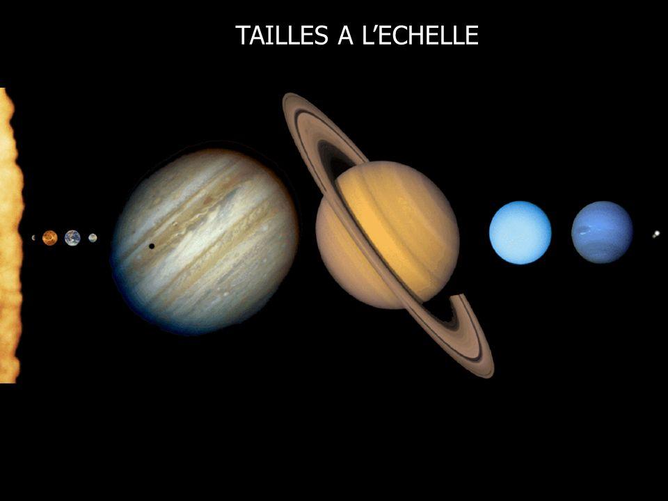 TAILLES A LECHELLE