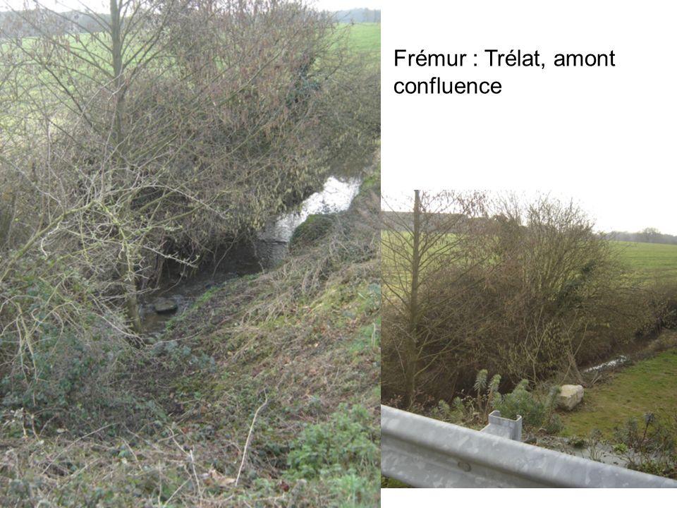 3 Floubalay : le Pont Crétin, aval confluence