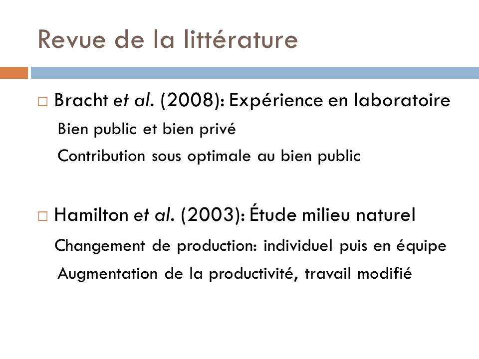 Revue de la littérature Bracht et al.