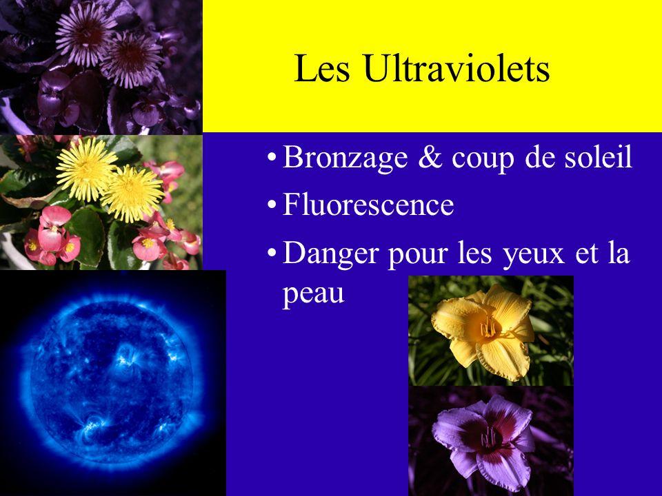 Le Spectre Éléctromagnétique BasseHaute LongueCourte Longueur donde Fréquence Ultra- Violet