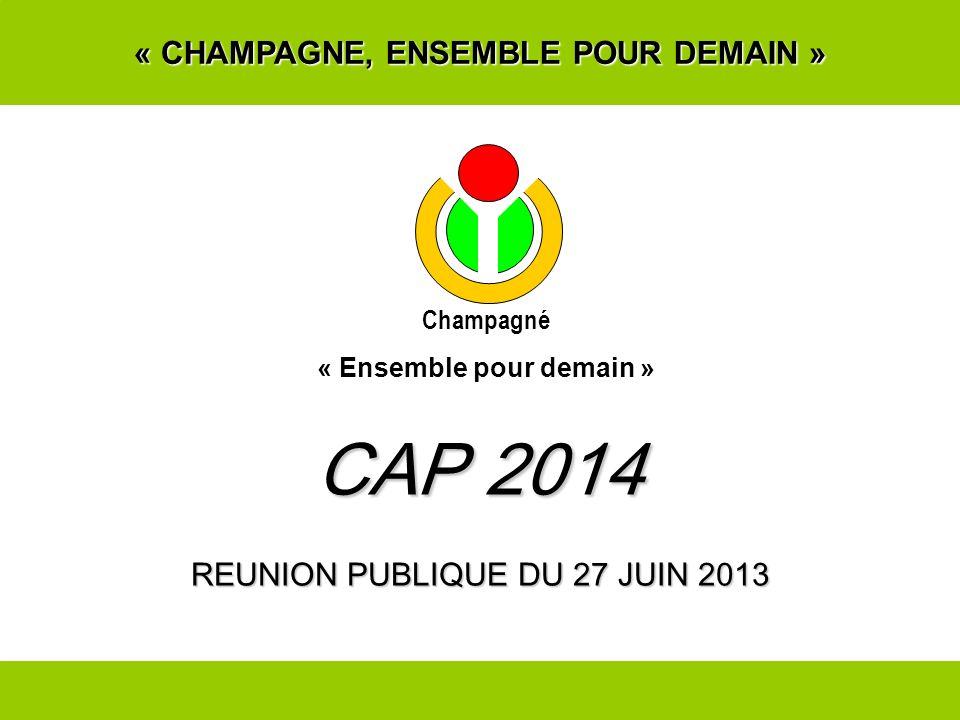 « CHAMPAGNE, ENSEMBLE POUR DEMAIN » CAP 2014 REUNION PUBLIQUE DU 27 JUIN 2013 Champagné « Ensemble pour demain »