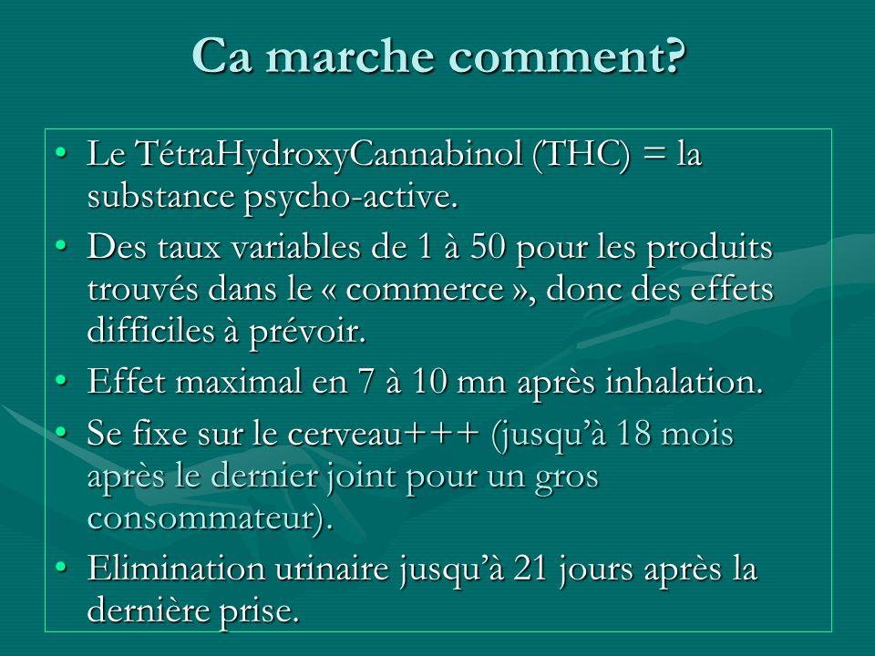 Ca marche comment? Le TétraHydroxyCannabinol (THC) = la substance psycho-active.Le TétraHydroxyCannabinol (THC) = la substance psycho-active. Des taux