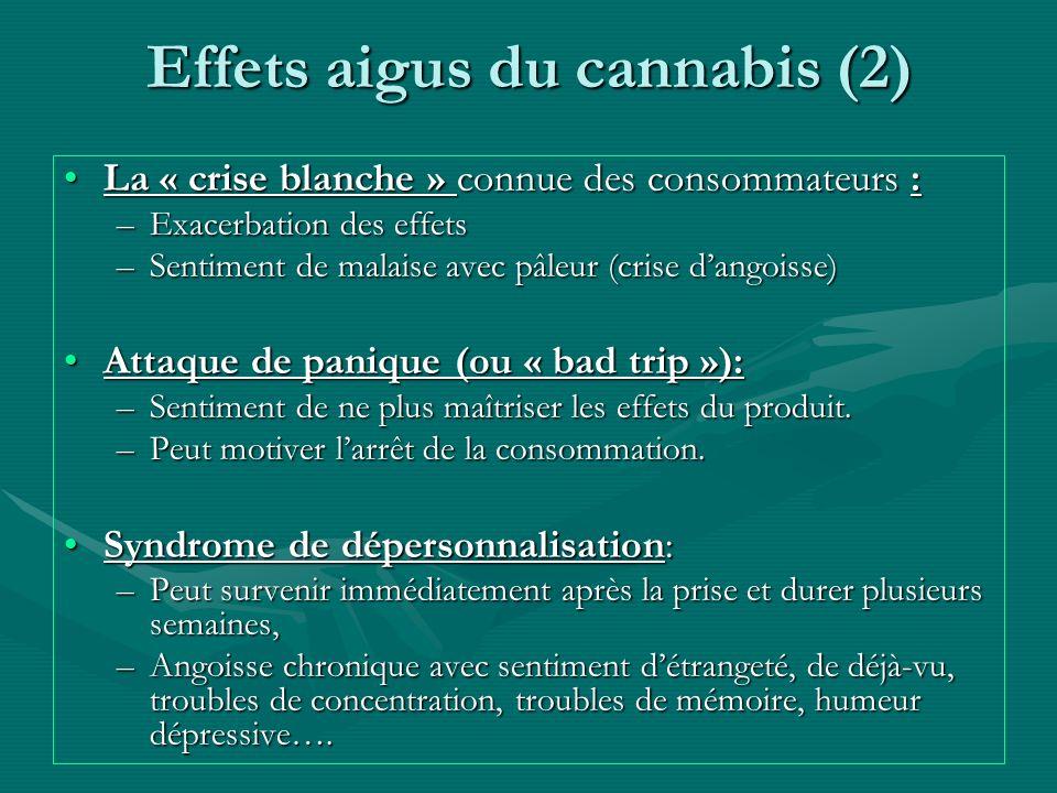 Effets aigus du cannabis (2) La « crise blanche » connue des consommateurs :La « crise blanche » connue des consommateurs : –Exacerbation des effets –