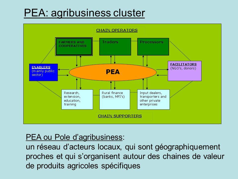 PEA: agribusiness cluster PEA ou Pole dagribusiness: un réseau dacteurs locaux, qui sont géographiquement proches et qui sorganisent autour des chaine