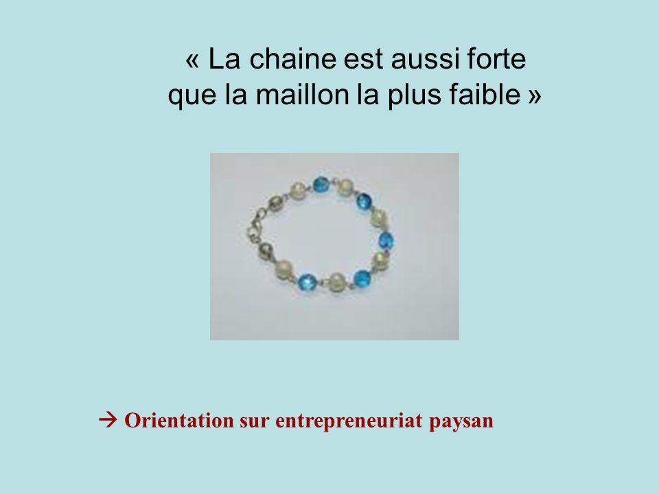 « La chaine est aussi forte que la maillon la plus faible » Orientation sur entrepreneuriat paysan