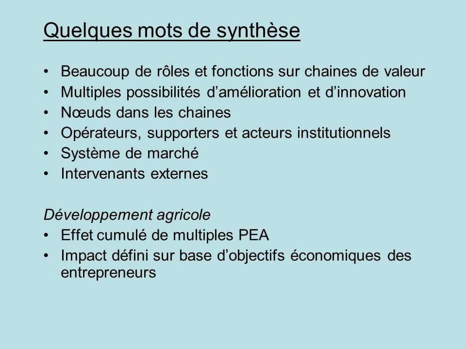 Quelques mots de synthèse Beaucoup de rôles et fonctions sur chaines de valeur Multiples possibilités damélioration et dinnovation Nœuds dans les chai