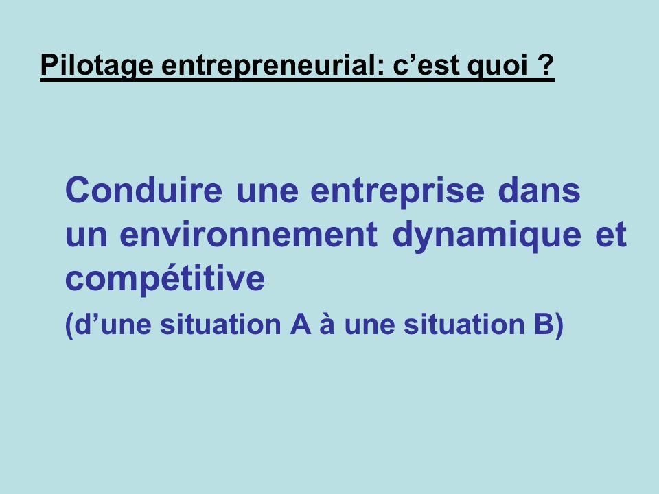 Pilotage entrepreneurial: cest quoi ? Conduire une entreprise dans un environnement dynamique et compétitive (dune situation A à une situation B)