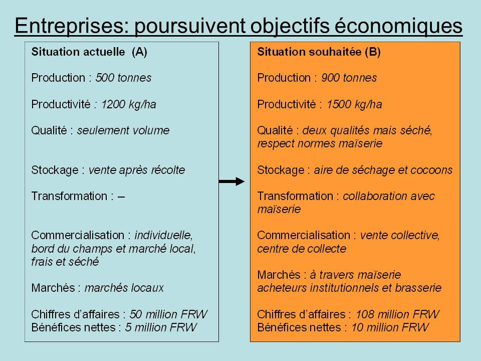 Entreprises: poursuivent objectifs économiques