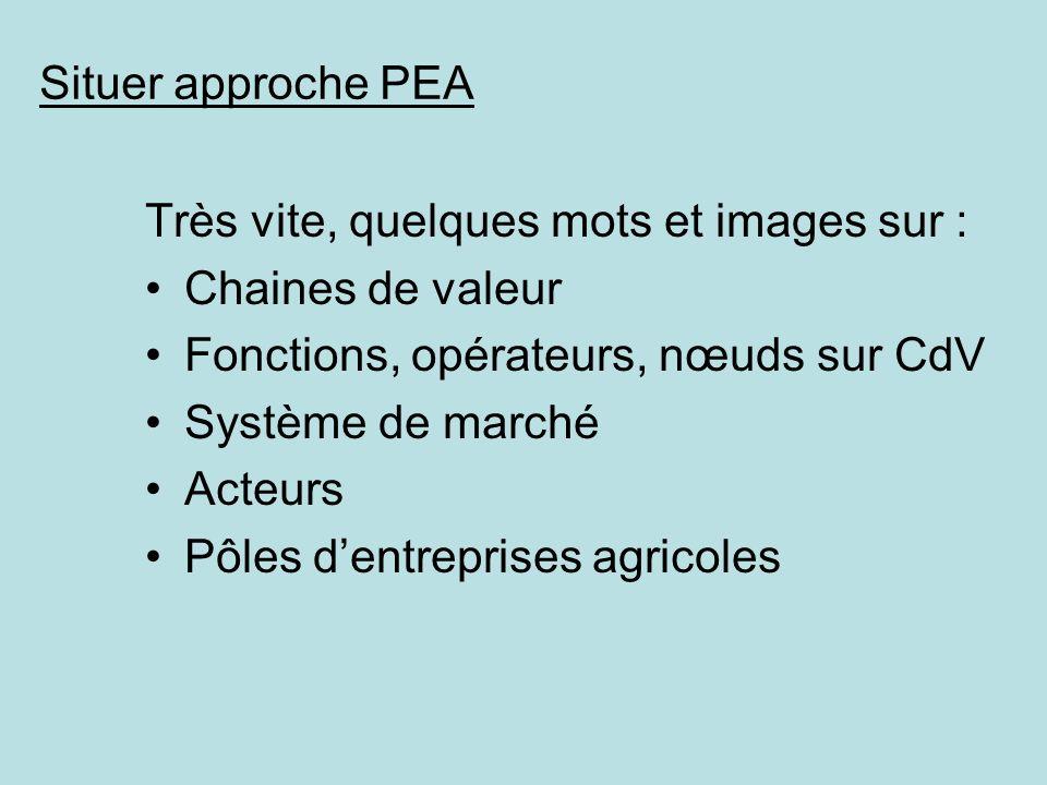 Situer approche PEA Très vite, quelques mots et images sur : Chaines de valeur Fonctions, opérateurs, nœuds sur CdV Système de marché Acteurs Pôles de