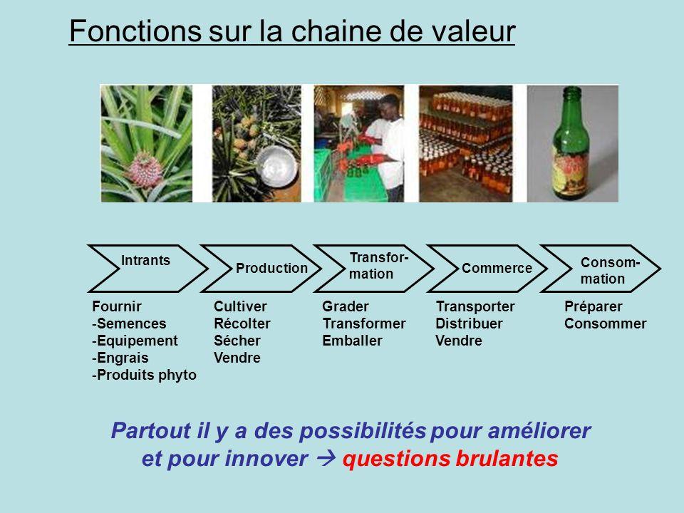 Partout il y a des possibilités pour améliorer et pour innover questions brulantes Fonctions sur la chaine de valeur Intrants Fournir -Semences -Equip