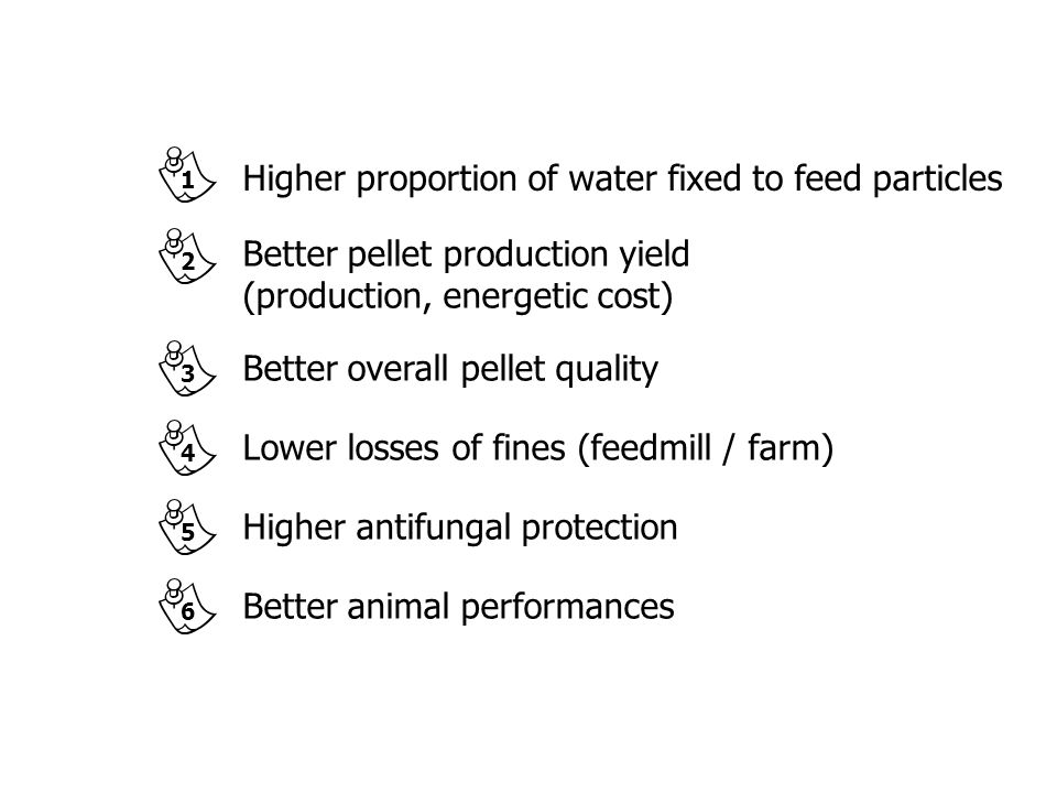 Higher proportion of water fixed to feed particles Better pellet production yield (production, energetic cost) Better overall pellet quality Lower los