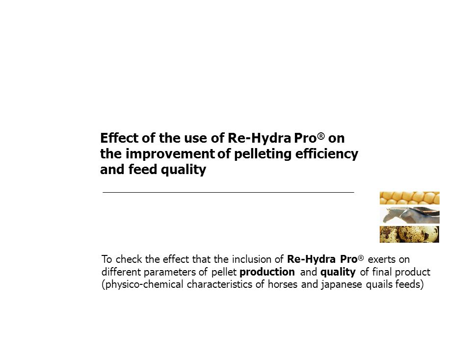 Effect of the use of Re-Hydra Pro ® on the improvement of pelleting efficiency and feed quality To check the effect that the inclusion of Re-Hydra Pro