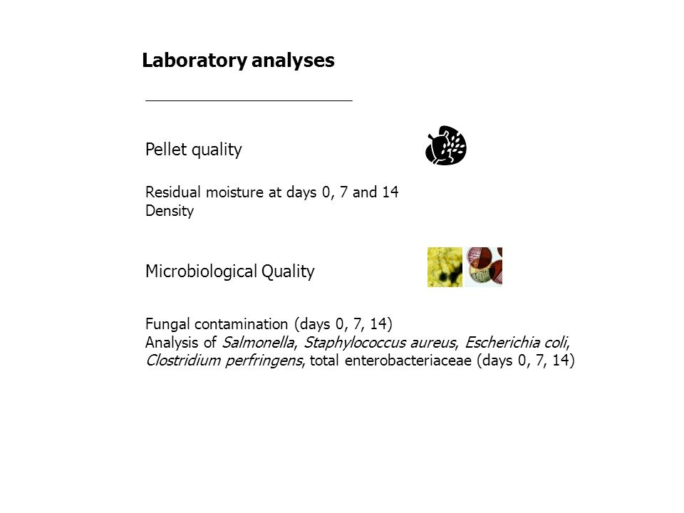 Laboratory analyses Pellet quality Residual moisture at days 0, 7 and 14 Density Fungal contamination (days 0, 7, 14) Analysis of Salmonella, Staphylo