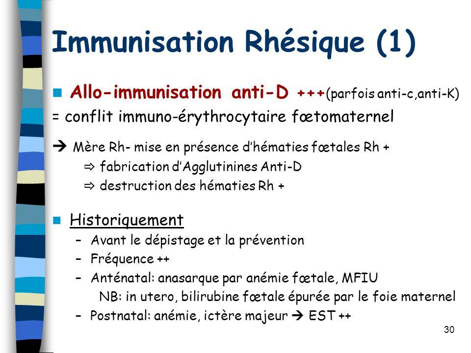 30 Immunisation Rhésique (1) Allo-immunisation anti-D +++ (parfois anti-c,anti-K) = conflit immuno-érythrocytaire fœtomaternel Mère Rh- mise en présen