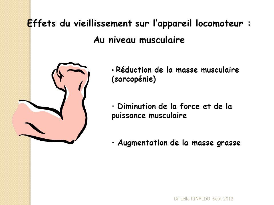 Effets du vieillissement sur lappareil locomoteur : Au niveau musculaire Réduction de la masse musculaire (sarcopénie) Diminution de la force et de la