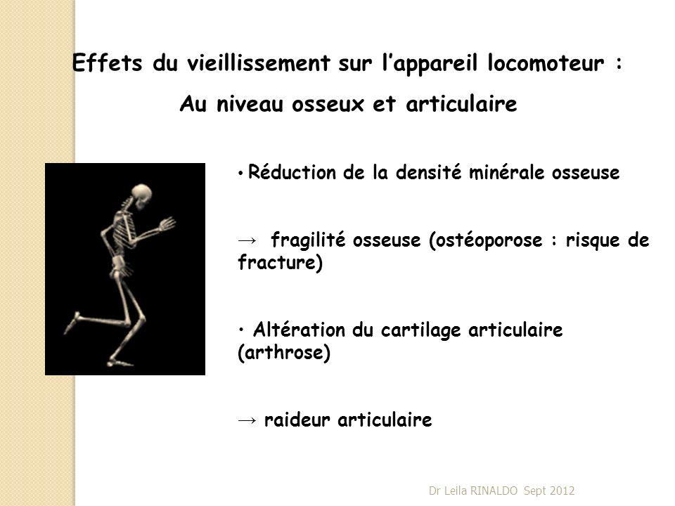 Effets du vieillissement sur lappareil locomoteur : Au niveau osseux et articulaire Réduction de la densité minérale osseuse fragilité osseuse (ostéop