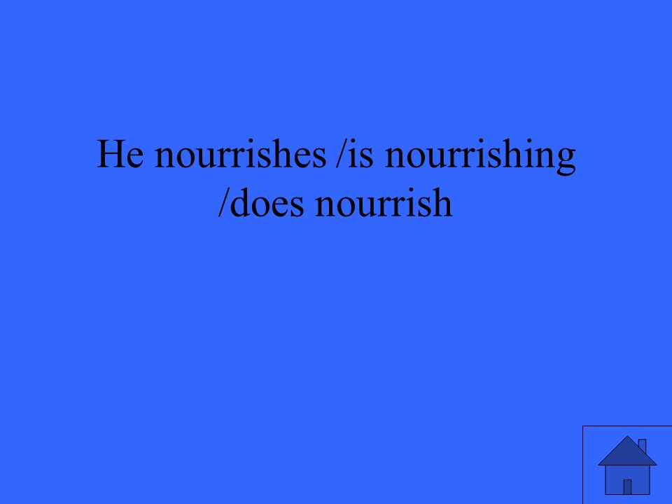 He nourrishes /is nourrishing /does nourrish