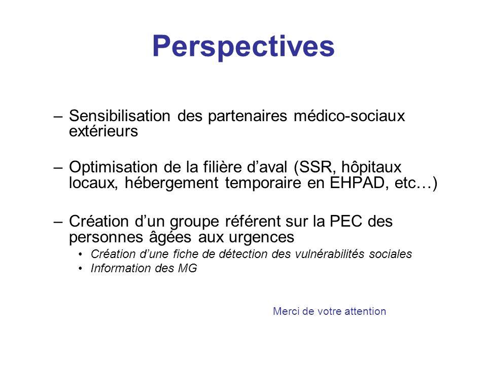 Perspectives –Sensibilisation des partenaires médico-sociaux extérieurs –Optimisation de la filière daval (SSR, hôpitaux locaux, hébergement temporair