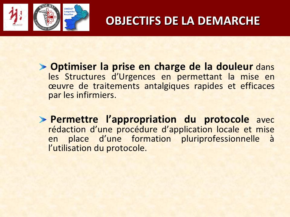 OBJECTIFS DE LA DEMARCHE OBJECTIFS DE LA DEMARCHE Optimiser la prise en charge de la douleur dans les Structures dUrgences en permettant la mise en œu