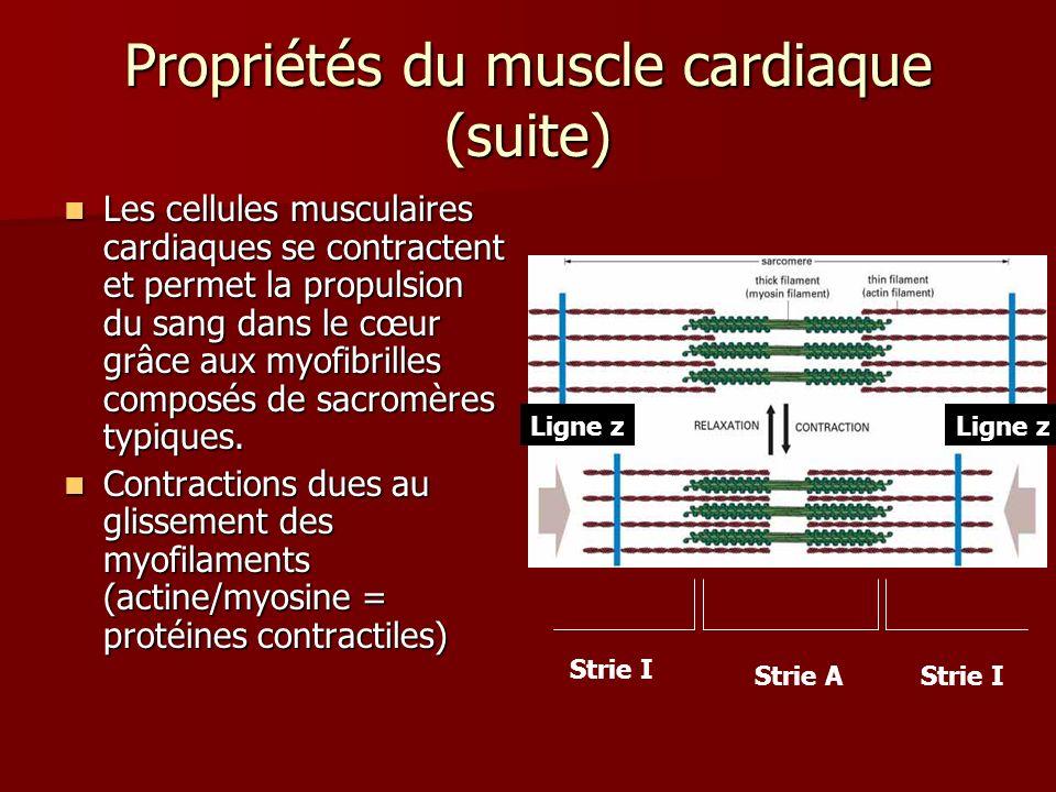 Propriétés du muscle cardiaque (suite) Les cellules musculaires cardiaques se contractent et permet la propulsion du sang dans le cœur grâce aux myofi