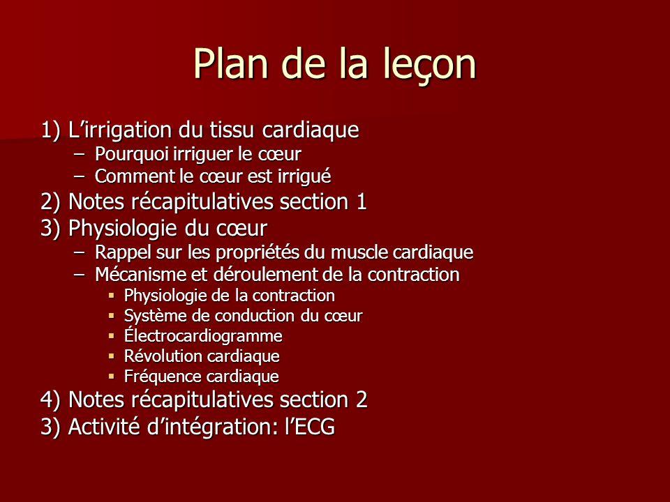Plan de la leçon 1) Lirrigation du tissu cardiaque –Pourquoi irriguer le cœur –Comment le cœur est irrigué 2) Notes récapitulatives section 1 3) Physi