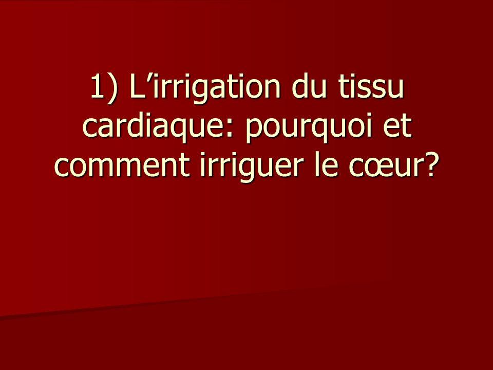 1) Lirrigation du tissu cardiaque: pourquoi et comment irriguer le cœur?