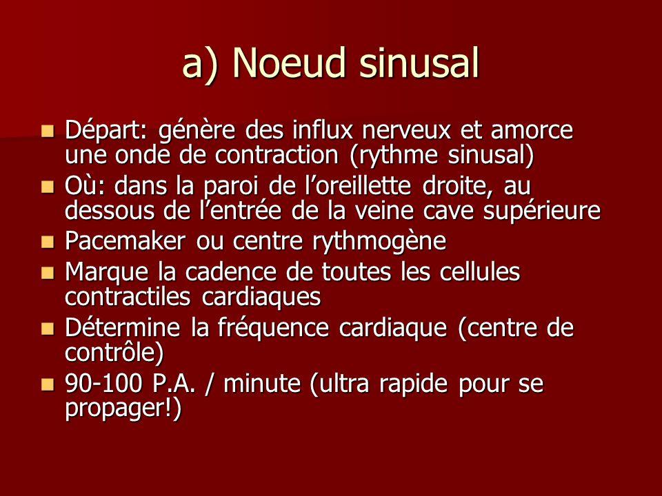 a) Noeud sinusal Départ: génère des influx nerveux et amorce une onde de contraction (rythme sinusal) Départ: génère des influx nerveux et amorce une