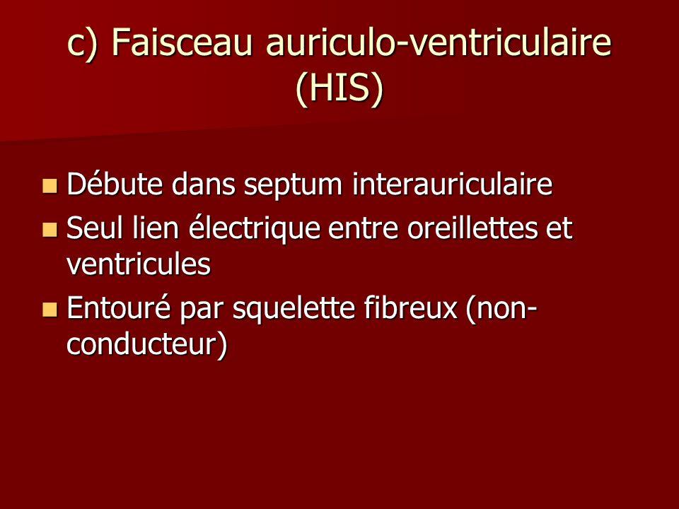 c) Faisceau auriculo-ventriculaire (HIS) Débute dans septum interauriculaire Débute dans septum interauriculaire Seul lien électrique entre oreillette