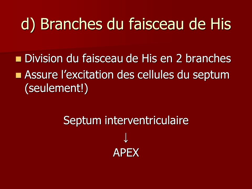 d) Branches du faisceau de His Division du faisceau de His en 2 branches Division du faisceau de His en 2 branches Assure lexcitation des cellules du