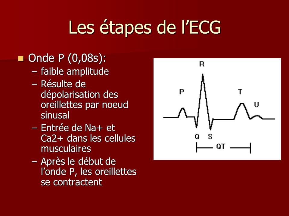 Les étapes de lECG Onde P (0,08s): Onde P (0,08s): –faible amplitude –Résulte de dépolarisation des oreillettes par noeud sinusal –Entrée de Na+ et Ca