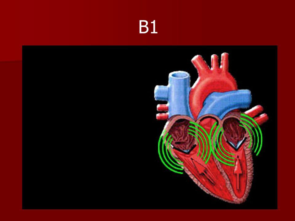 Origine des bruits du cœur (2) Le deuxième bruit entendu, nommé B2, provient de la fermeture des valvules aortique et pulmonaire.(haute fréquence) Le deuxième bruit entendu, nommé B2, provient de la fermeture des valvules aortique et pulmonaire.(haute fréquence) Il se produit à la fin de la systole ventriculaire.