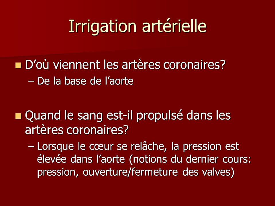 Irrigation artérielle Doù viennent les artères coronaires? Doù viennent les artères coronaires? –De la base de laorte Quand le sang est-il propulsé da