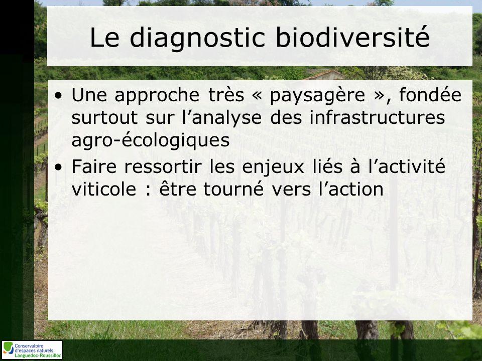 Le diagnostic biodiversité Une approche très « paysagère », fondée surtout sur lanalyse des infrastructures agro-écologiques Faire ressortir les enjeux liés à lactivité viticole : être tourné vers laction