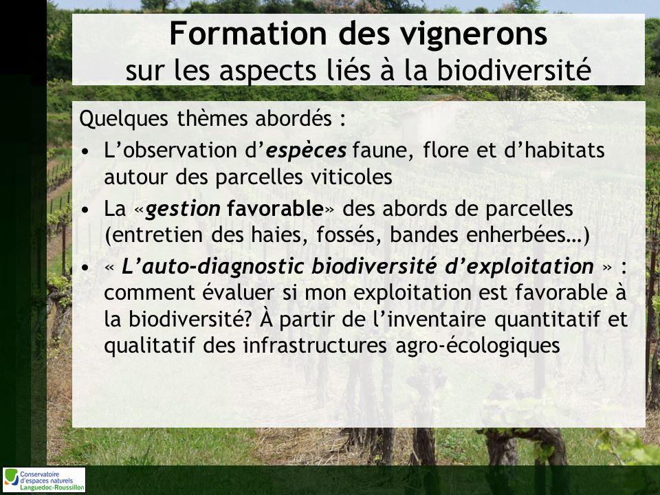 Formation des vignerons sur les aspects liés à la biodiversité Quelques thèmes abordés : Lobservation despèces faune, flore et dhabitats autour des pa
