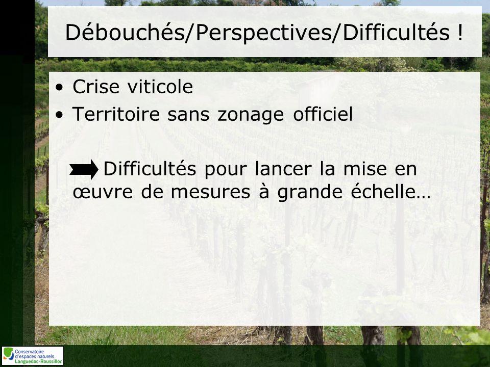 Débouchés/Perspectives/Difficultés ! Crise viticole Territoire sans zonage officiel Difficultés pour lancer la mise en œuvre de mesures à grande échel