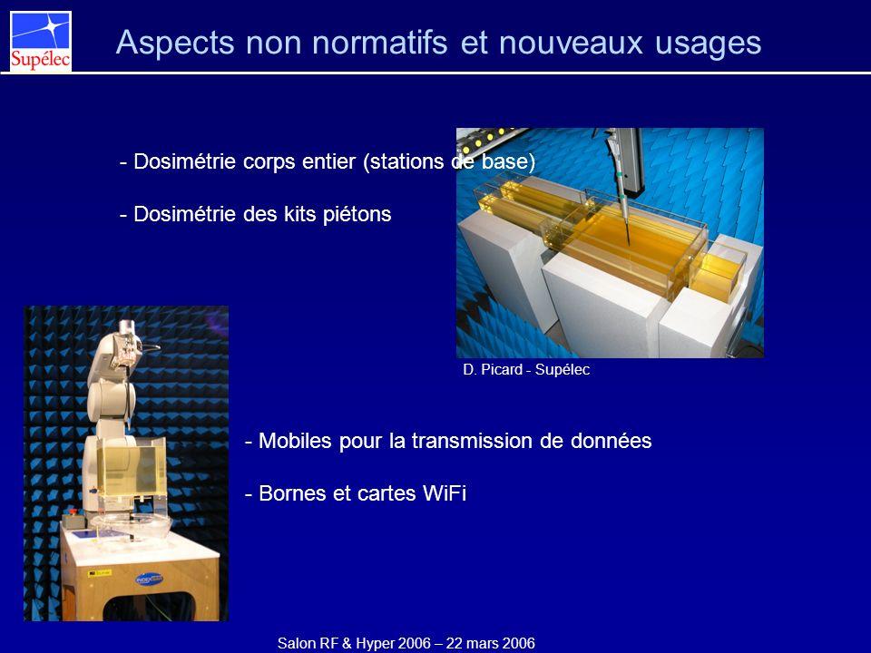 Salon RF & Hyper 2006 – 22 mars 2006 Aspects non normatifs et nouveaux usages - Dosimétrie corps entier (stations de base) - Dosimétrie des kits piéto
