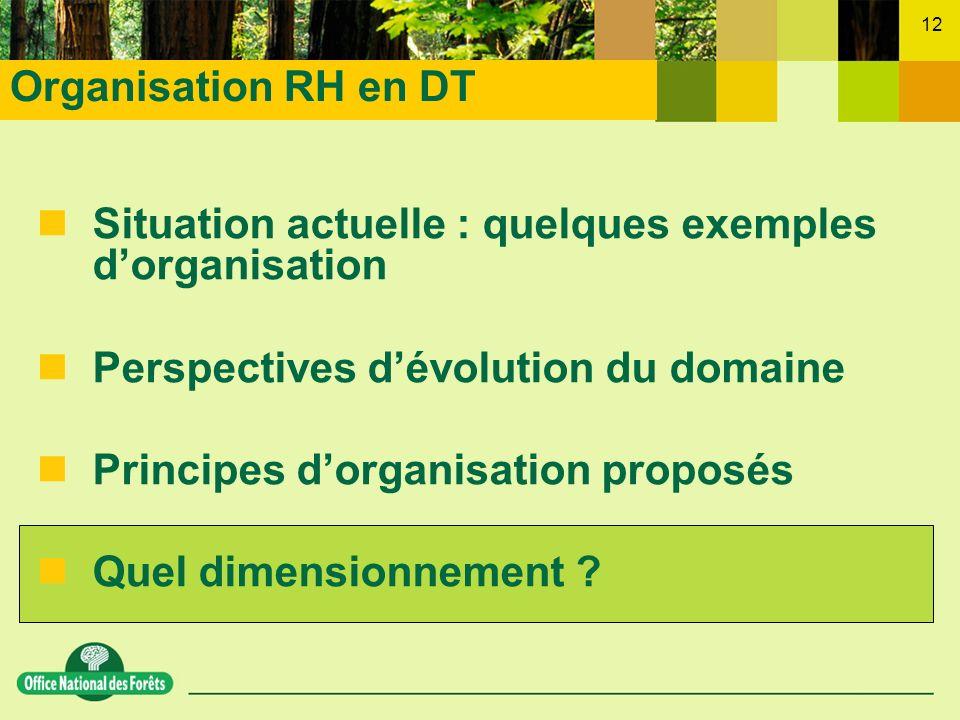 12 nSituation actuelle : quelques exemples dorganisation nPerspectives dévolution du domaine nPrincipes dorganisation proposés nQuel dimensionnement ?
