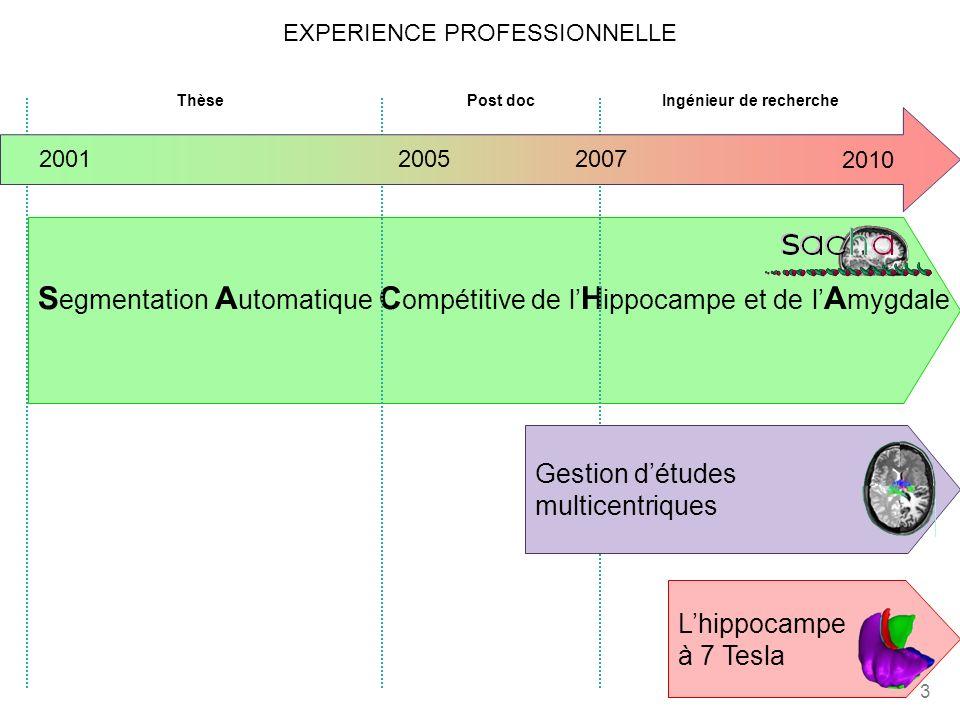 4 2005 20072001 ThèsePost docIngénieur de recherche Gestion détudes multicentriques Lhippocampe à 7 Tesla Segmentation automatique de lhippocampe - SACHA conception, implémentation & validation (semi automatique) amélioration, implémentation & validation (automatique) développements longitudinaux… … … application grands groupes de sujets 2010
