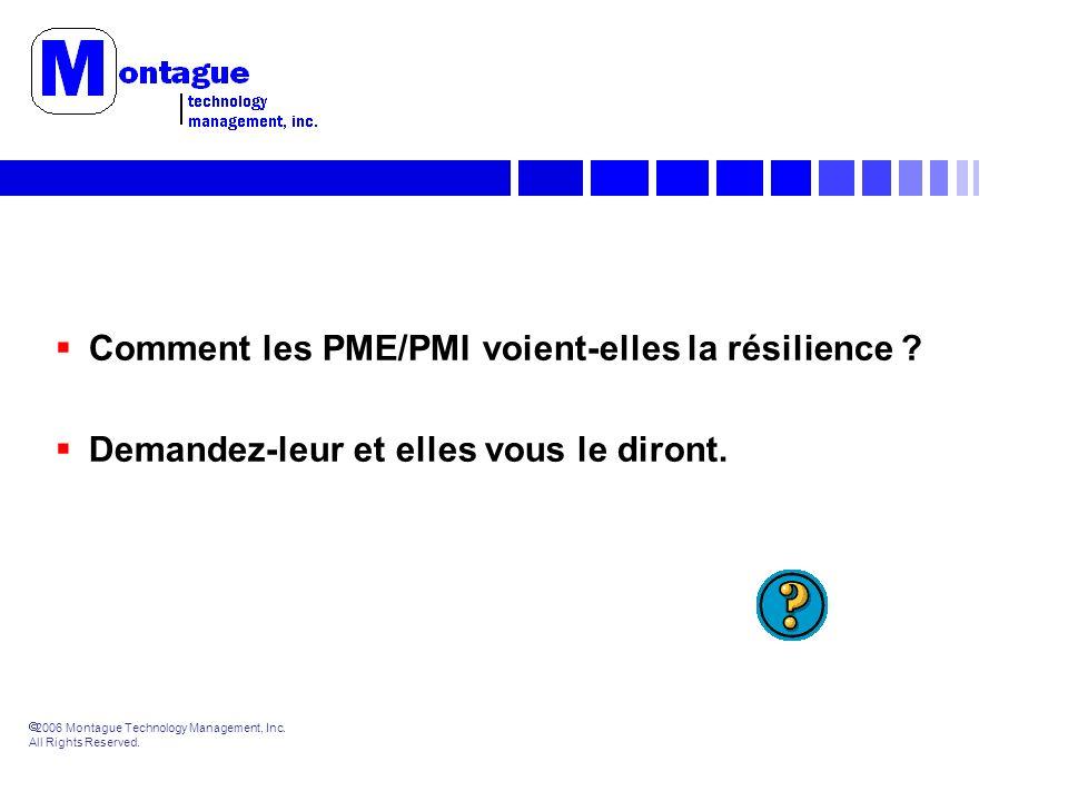 2006 Montague Technology Management, Inc. All Rights Reserved. Comment les PME/PMI voient-elles la résilience ? Demandez-leur et elles vous le diront.