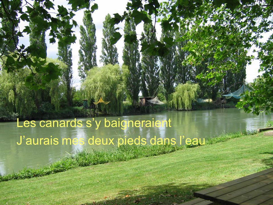 Poème de Claude Marcel Breault Les canards sy baigneraient Jaurais mes deux pieds dans leau