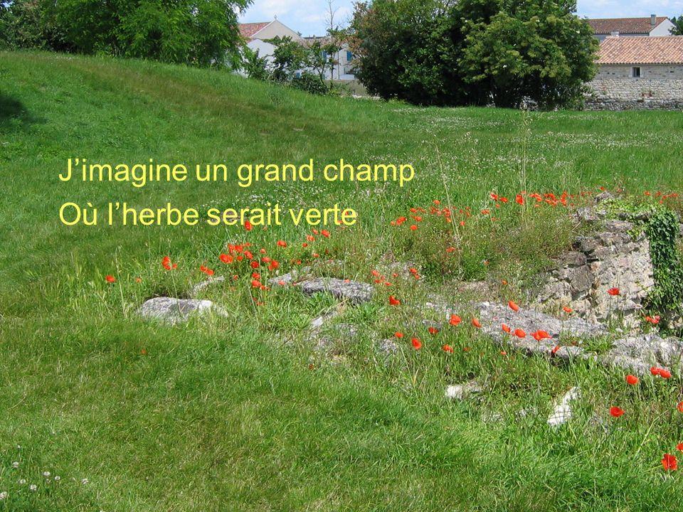 Poème de Claude Marcel Breault Jimagine un grand champ Où lherbe serait verte