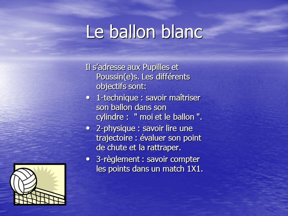 Comment fait-on passer les «ballons»? Il existe actuellement quatre niveaux: Blanc: « moi et le ballon » Blanc: « moi et le ballon » Jaune: le renvoi