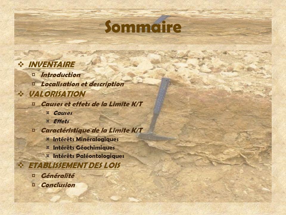 Sommaire INVENTAIRE ¤ Introduction ¤ Localisation et description VALORISATION ¤ Causes et effets de la Limite K/T ¤Causes ¤Effets ¤ Caractéristique de