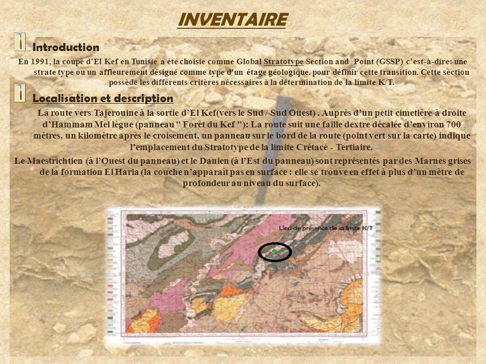 Introduction En 1991, la coupe dEl Kef en Tunisie a été choisie comme Global Stratotype Section and Point (GSSP) cest-à-dire: une strate type ou un af