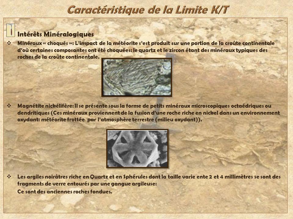 Intérêts Minéralogiques Minéraux « choqués »: Limpact de la météorite sest produit sur une portion de la croûte continentale doù certaines composantes