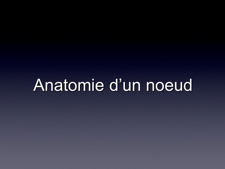 Anatomie dun noeud