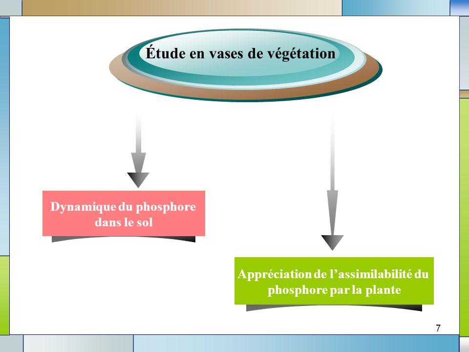 7 Étude en vases de végétation Dynamique du phosphore dans le sol Appréciation de lassimilabilité du phosphore par la plante