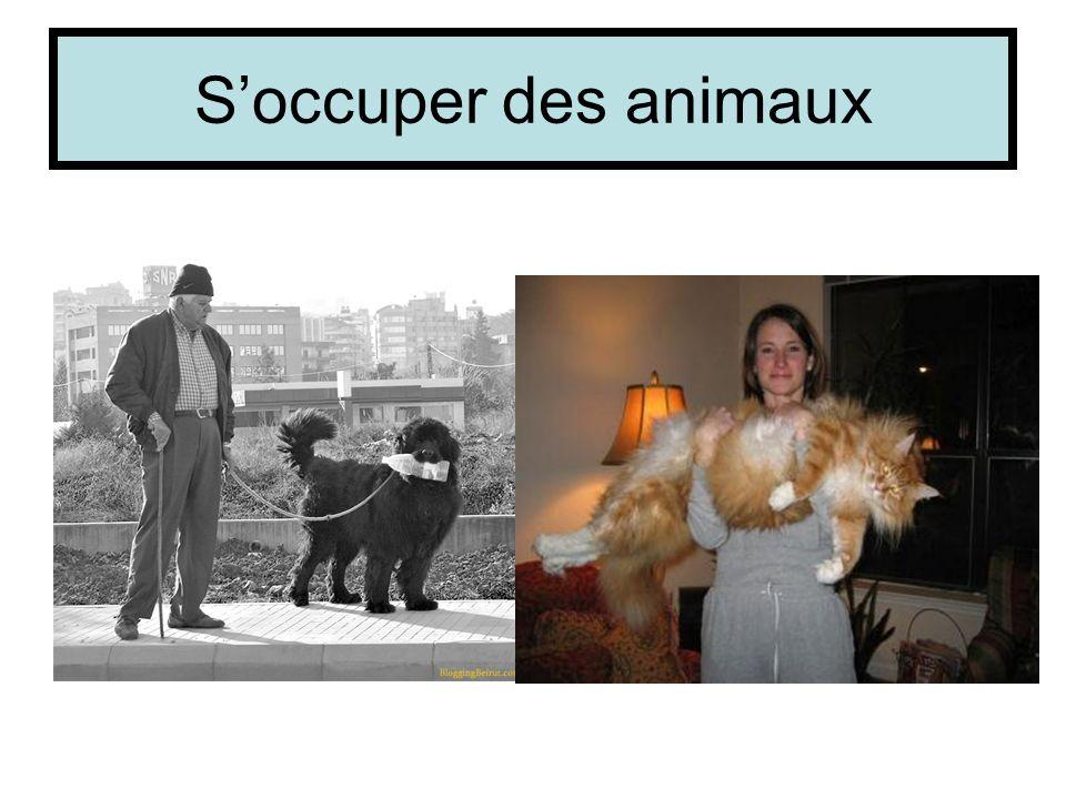 Soccuper des animaux