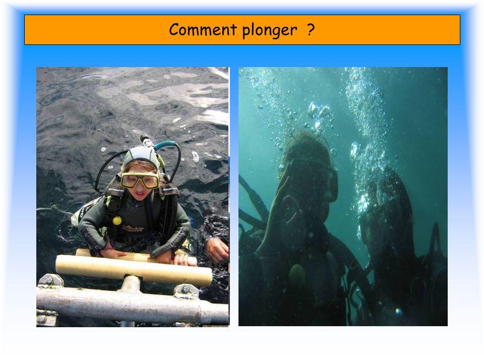 Comment plonger ?